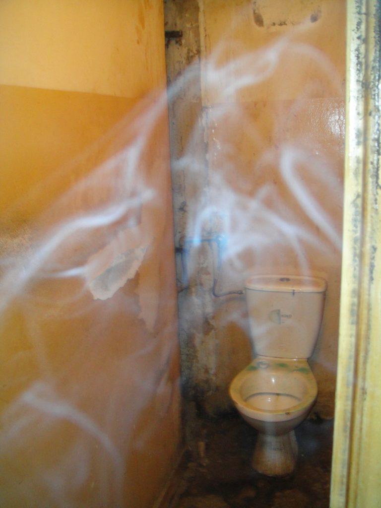 toaleta przed remontem